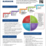 Infographic Networking Resume