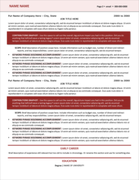 Berry Perfection Resume Template Page 2