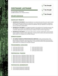 Computerworks Resume Addendum